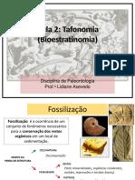 Aula 2 Tafonomia Bioestratinomia
