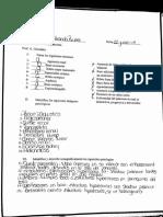 repaso rinon bazo y pancreas 27-jun -2017 21-13-39 page 1