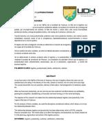 ARTICULO CIENTIFICO LA LOGÍSTICA Y LA PRODUCTIVIDAD .pdf.pdf