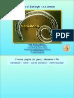 05b Nematodi New