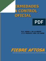 Aftosa y Bse Curso Tic 20113