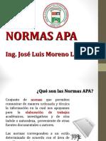 N0RMAS APA 6.ppt