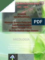 morfologiayreproduccion-hongosdiapo-120325210442-phpapp01 - copia.pptx