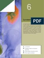 bg3unidad06 EXCRESION.pdf