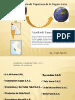 6. Cadenas Productivas - Agurto