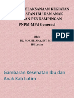Presentation PNPM