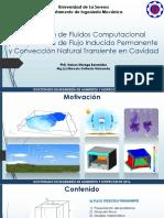 Clase PhD-13 10 2016-Flujo Inducido y Convección Natural en Cavidad Cúbica