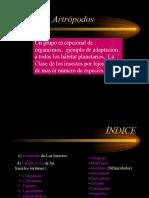 artropodos_clase_general_def.pps