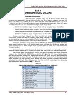 Draft Bab II - Buku Putih Kab. Lima Puluh Kota Edited