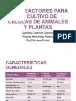 Biorreactores para el cultivo de células de animales y plantas