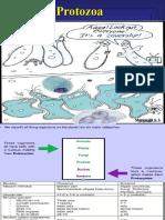 Protozoa Kuliah