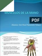 Musculos de La Mano