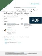 METARHIZIUM ANISOPLIAE OF PENINSULAR MALAYSIA ORIGIN POSES HIGH PATHOGENICITY TOWARD COPTOTERMES CURVIGNATHUS, A MAJOR WOOD AND TREE PEST