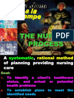 5378740 the Nursing Process