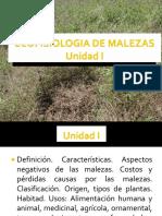 Unidad I. Ecofisiologia de malezas