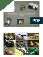 Animales Que Desaparecieron en El Perú