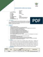 Programación Curricular Anual Franco Llaugueda