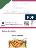 Pratica - Morfologia Do Sistema Cardiovascular