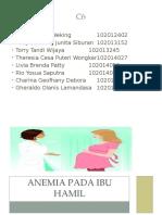 Anemia Pada Ibu Hamil Blok 25 Pbl
