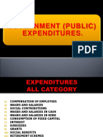 Government (Public) Expenditure