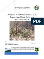 Informe Final Monitoreo de Biodiversidad Marina en RNPC Ponce (Reverdece)