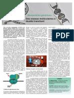 GPJJC 2017 - Article Selim Et Arthur