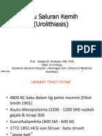 02 Urothialisis - Prof. Doddy M Soebadi