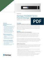 Netapp FAS2620 Ds