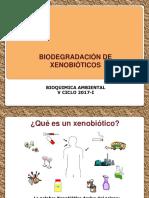 Xenobioticos 2017 i