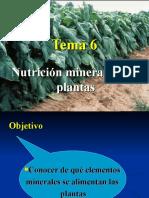 Tema 6. Nutricion Mineral