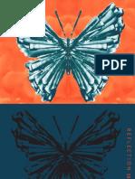 portfolio version