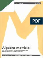 Álgebra Matricial - Base Universitaria