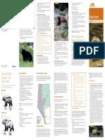 bear-smart-brochure-web.pdf