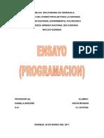 Ensayo de Programacion Nixon Moreno