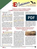 SBE Noticias 358