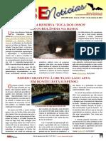 SBE Noticias 357