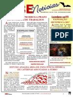 SBE Noticias 355