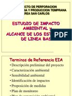 Linea base EIA  Pozos Profundos.ppt