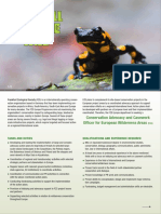 FZS Job Ad Advocacy European Wilderness Areas