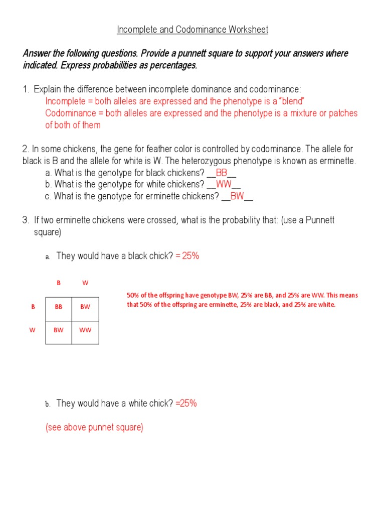 IncompleteandCodominanceWorksheet answersdoc – Punnett Square Worksheet Answers