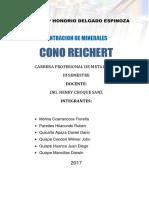Informe Cono Reichert