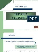 5 Aula Fea Terapia Cognitiva