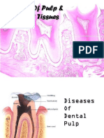 Diseases of Pulp and Periapical