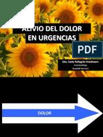 Alivio Del Dolor en Urgencias Dra. Carla Pellegrin ccn