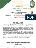 Expocicon Hidrobiologicos - Congelacion y Procesos