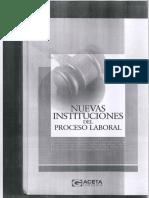 Instituciones Del Proceso Laboral