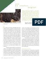 trufas_negras.pdf