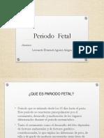 periodo-fetal.ppt