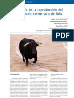 cys_32_48-53_La ecografía en la reproducción del ganado vacuno extensivo y de lidia