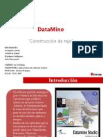 Software Datamine informe